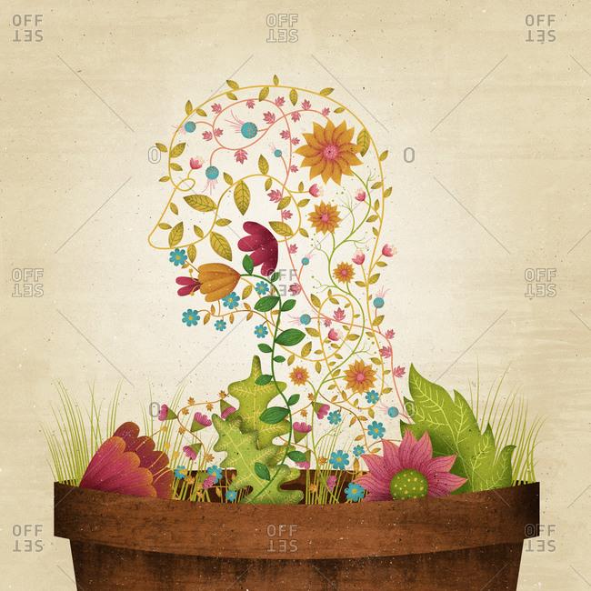 Plants growing in head shape
