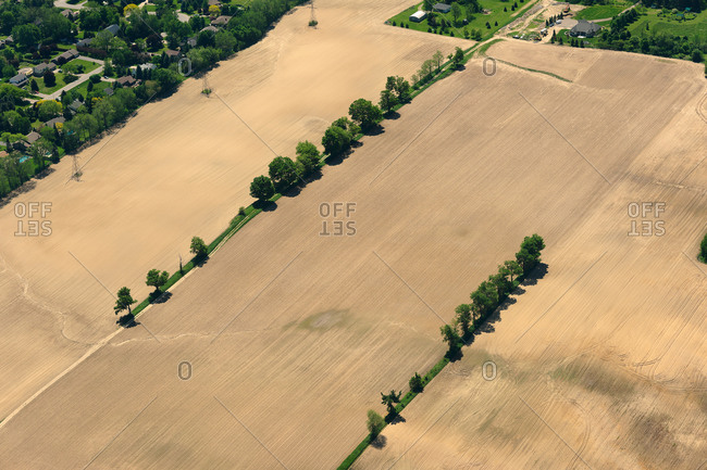 Aerial view of farm fields divided by rows of trees