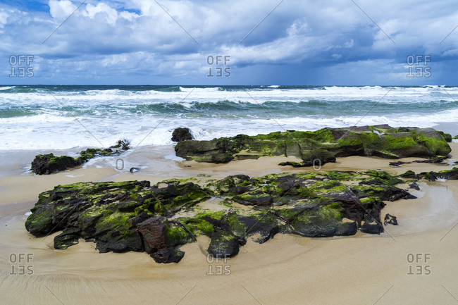 Seaweed covered rocks exposed on the beach at low tide