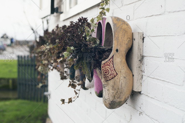 White brick wall decorated with Dutch wooden shoes filled with flowers