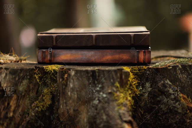 Two books stacked on top of a tree stump