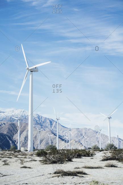 Wind farm in California desert