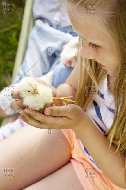 Girl holding young chicken