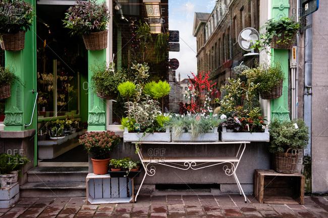Florist in Bruges, Belgium