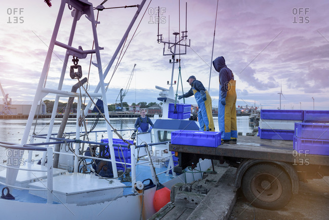 Fishermen unloading fish from trawler at dusk