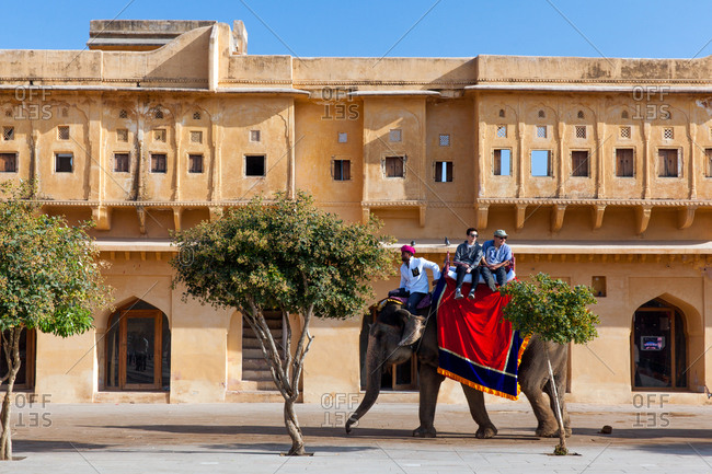 Elephants carrying tourists at Amer Fort of Jaipur, Rajasthan