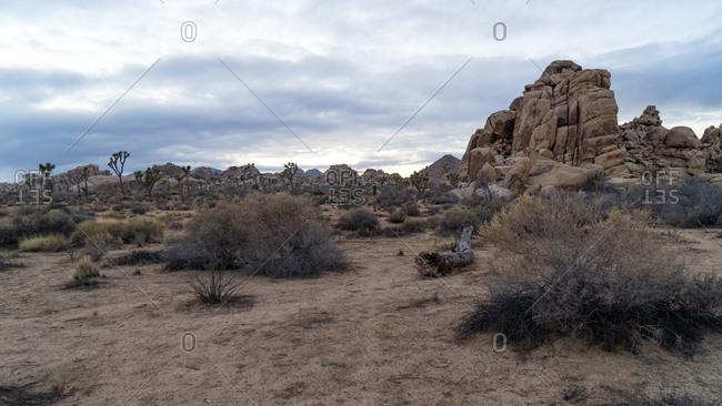 Granite rock formations at sunset in Joshua Tree National Park