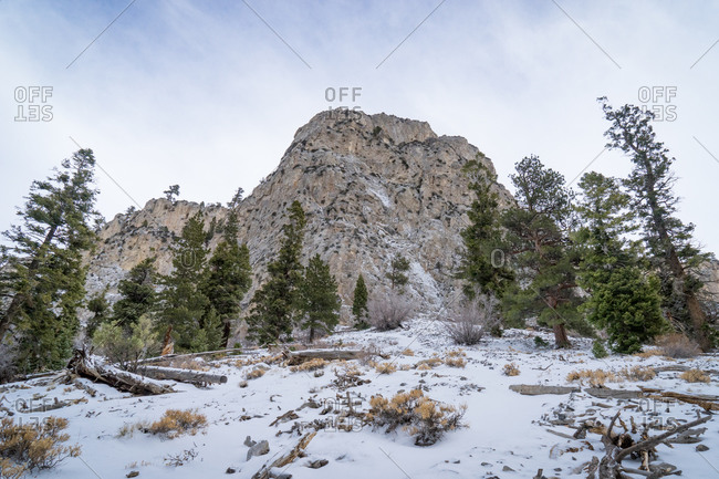 Cliff at Mount Charleston in winter, Nevada
