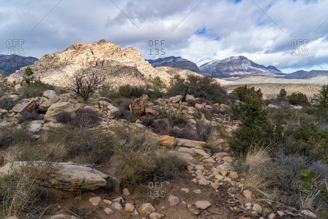 Rock strewn desert landscape in Nevada