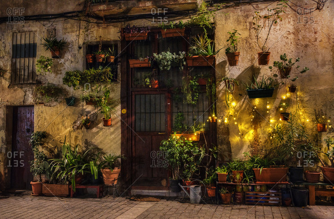 Christmas lights and hanging plants on a building exterior