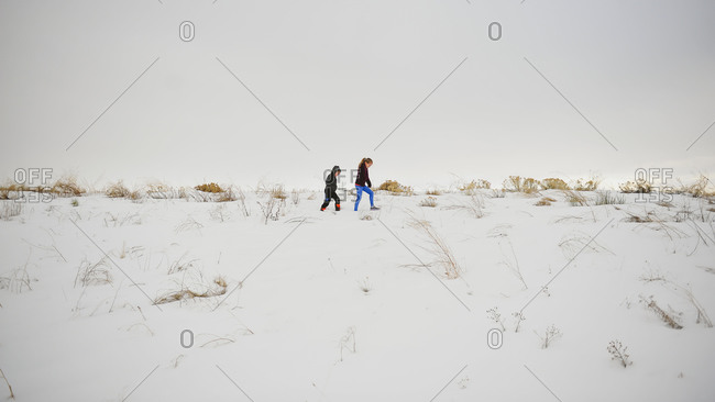 Siblings walking atop a snow hill
