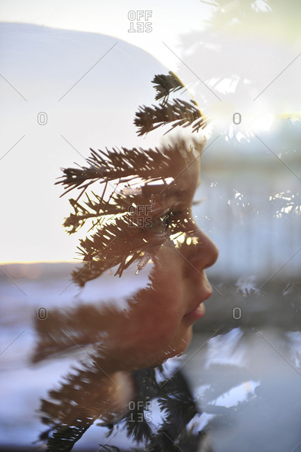 View of boy in window with reflection of a tree