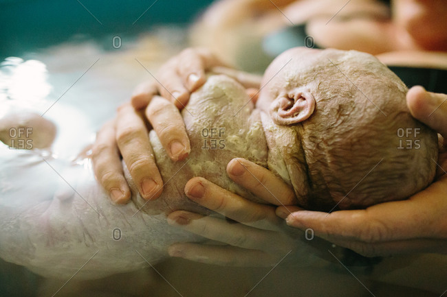 Newborn cradled in hands