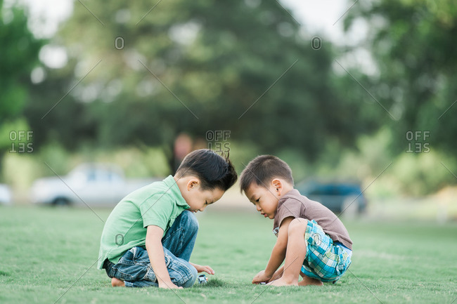 Little boys playing with toy cars in a park