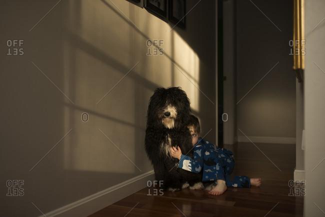 Boy hiding behind a dog