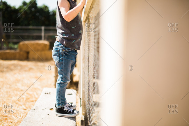 Boy standing on bench at fence at farm