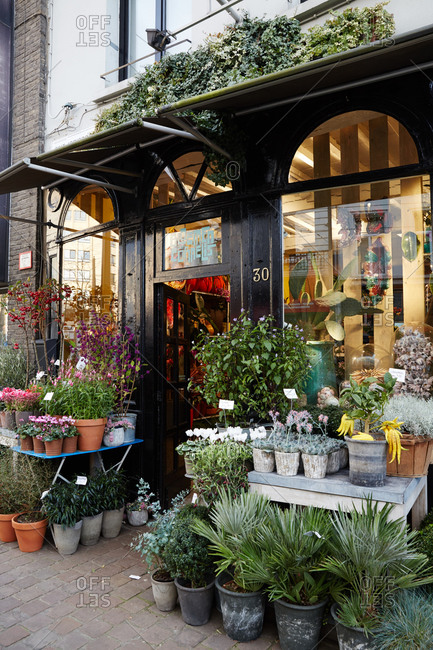 Antwerp, Belgium - November 5, 2014: Plant shop storefront in Antwerp, Belgium