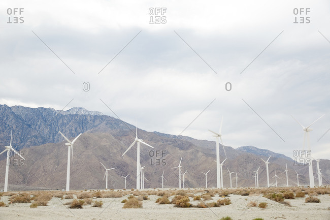 Wind farm in California desert