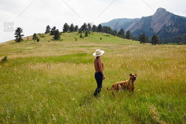 Woman gazing at mountains in field with dog