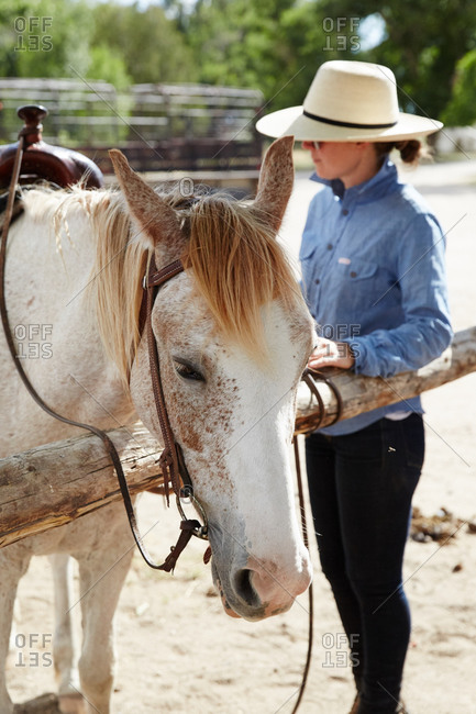 Woman tying a brown spotted white horse to post