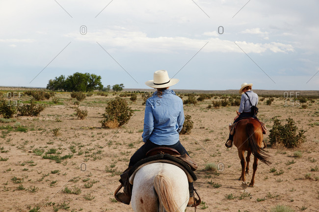 Back view of two horseback riders in field