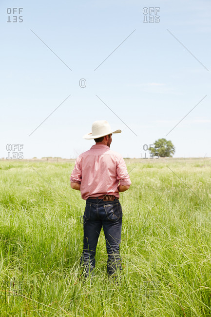 Colorado, USA - June 26, 2014: Back view of man in cowboy hat in field