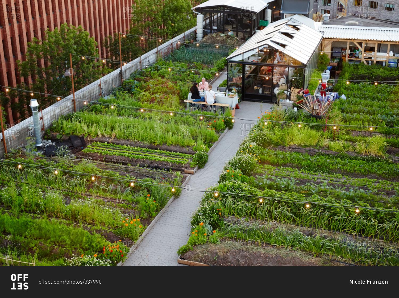 Copenhagen Denmark July 2 2015 Rooftop Garden Restaurant In Copenhagen Stock Photo Offset