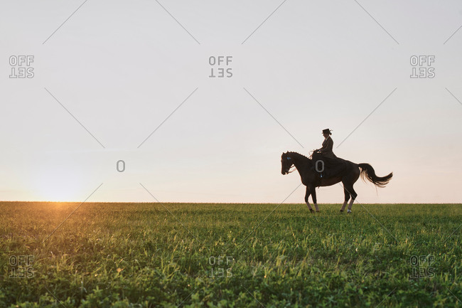 Silhouetted dressage horse and rider training in field at sunset