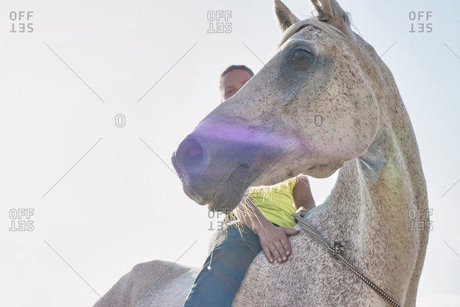 Low angle view of woman riding grey horse bareback