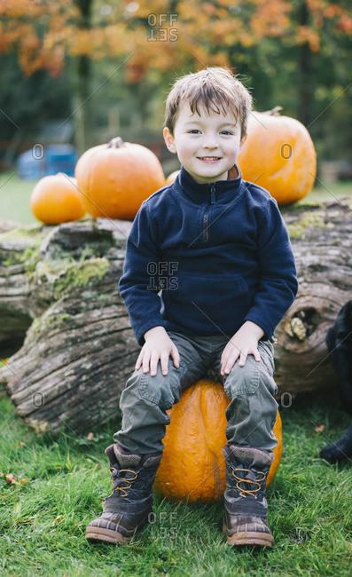 A boy sitting on a large orange pumpkin at pumpkin harvest