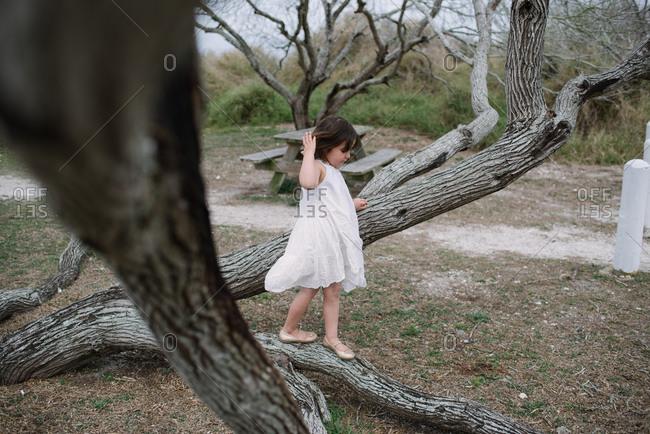 Girl walking across tree trunk