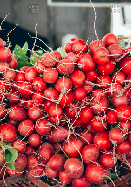 Stack of bright red radishes