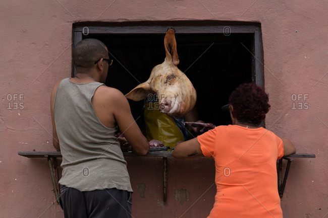 Pig head hanging in window