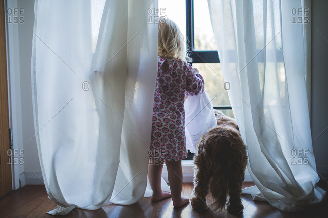 Little girl looking out a window with her dog
