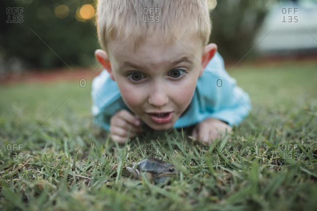 Excited little boy looking at a frog