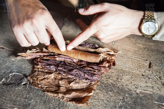 Person hand rolling a cigar