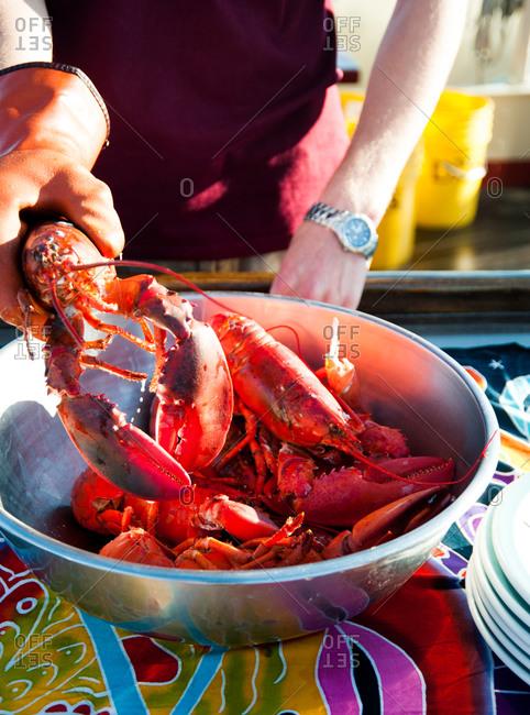 Serving fresh steamed lobster aboard sailboat