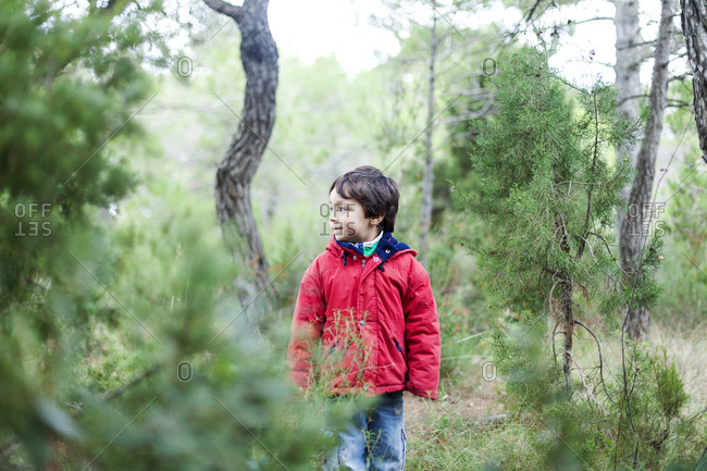 Little boy standing in the woods watching something