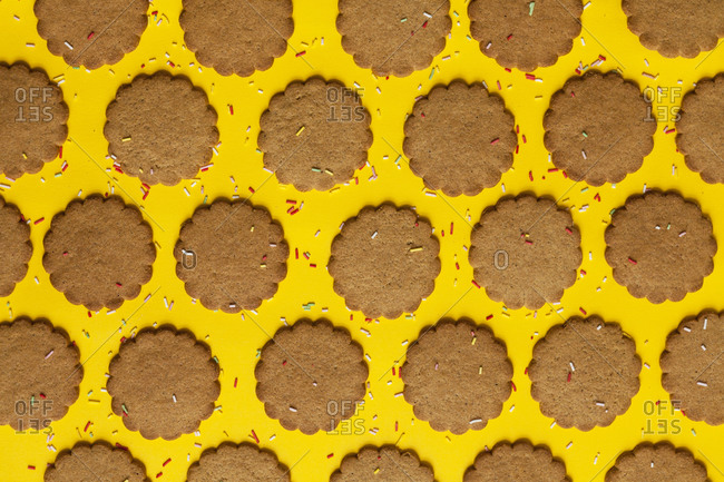 Rows of ginger cookies sprinkled with sugar granules on yellow background