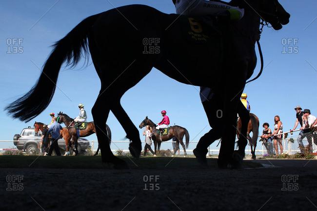 Invercargill, New Zealand - December 10, 2011: Jockeys preparing horses to ride