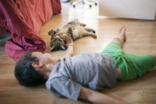 Boy reaching for cat
