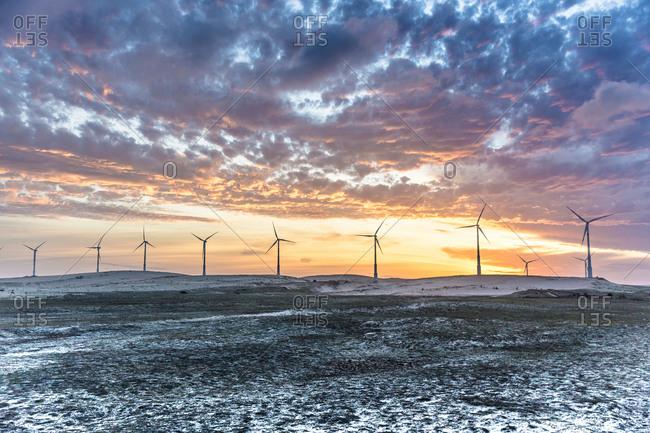 Wind turbines at sunset in winter, Taiba, Ceara, Brazil