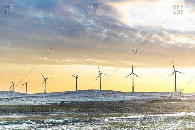 Wind turbines at sunset, Taiba, Ceara, Brazil