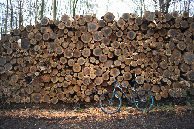 Bicycle leaning against stack of logs