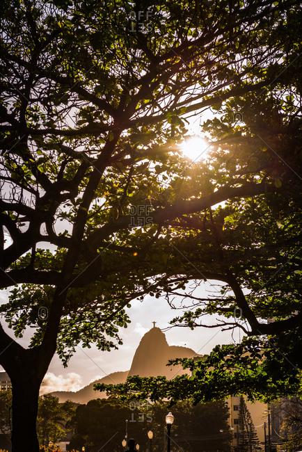 Rio de Janeiro, Brazil - September 27, 2013: Sun peeking through the tree with Christ the Redeemer in the distances