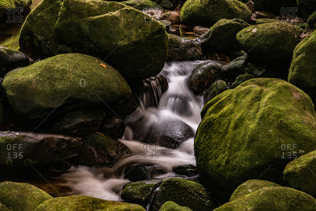 Water rushing over mossy rocks