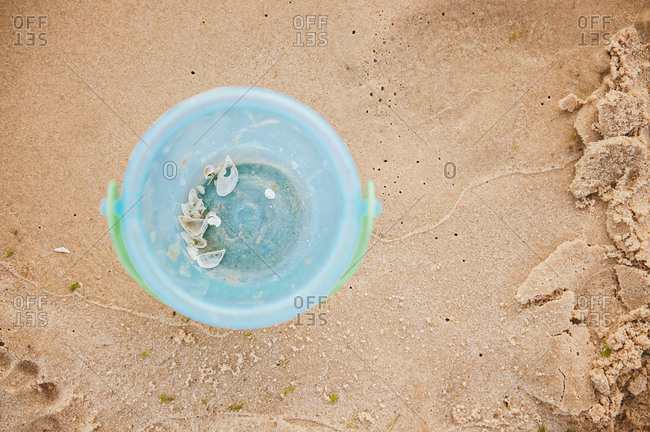 Overhead view of pail with seashells inside on beach
