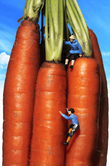 Toy mountain climber figures on carrots