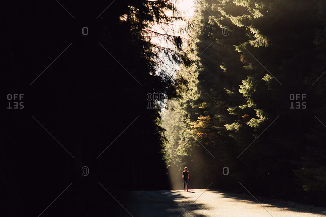 Man standing in sunlight on forest road