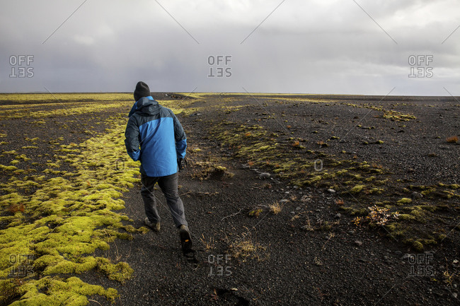 Man walking in Icelandic field